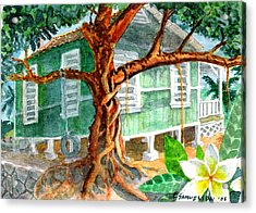 Banyan In The Backyard Acrylic Print
