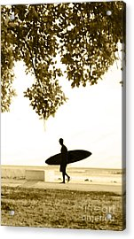 Banyan Surfer - Triptych  Part 3 Of 3 Acrylic Print