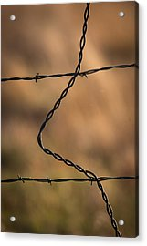 Barbed And Bent Fence Acrylic Print