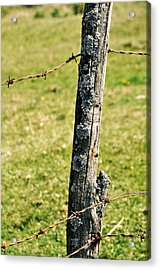 Barbed Fence Post Acrylic Print by JAMART Photography