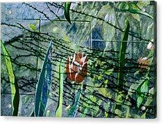 Barbed Vine Acrylic Print by Nancy  Ethiel