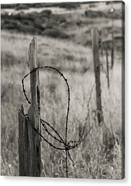 Barbed Wire Acrylic Print by Joseph Smith