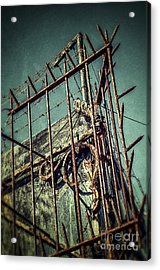 Barbed Wire On Wall Acrylic Print by Carlos Caetano