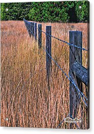 Acrylic Print featuring the photograph Barbwire In The Grass by William Havle