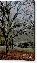 Acrylic Print featuring the photograph Bare Tree On Walking Path by Sandy Moulder