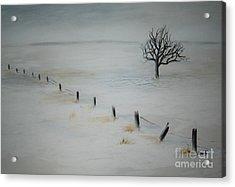 Bare Tree Acrylic Print by Vivian  Mosley