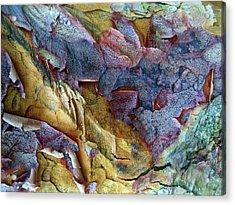 Bark Abstract Acrylic Print by Jessica Jenney