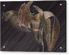 Barkdark Acrylic Print by Klee Miller