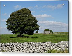 Barn And Tree Acrylic Print by Steev Stamford