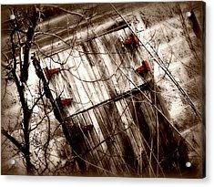 Barn Door Acrylic Print by Julie Hamilton