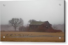Acrylic Print featuring the photograph Barn In Fog - Color by Kirkodd Photography Of New England