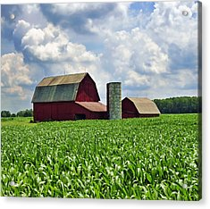 Barn In The Corn Acrylic Print
