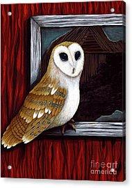 Barn Owl Beauty Acrylic Print