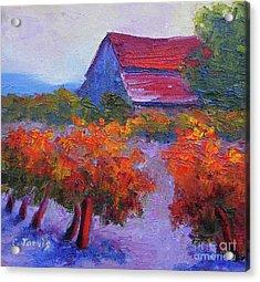 Barn Vineyard Autumn Acrylic Print