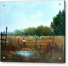 Barnyard Chatter Acrylic Print by Sally Seago