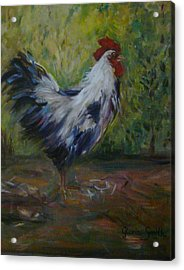 Barnyard Acrylic Print by Gloria Smith