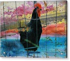 Barnyard Hero #3 Acrylic Print