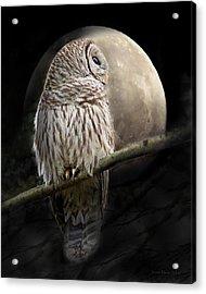 Barred Owl Moon Glow Acrylic Print by Jennie Marie Schell
