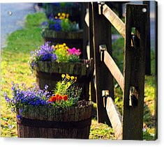 Barrel Of Spring Acrylic Print