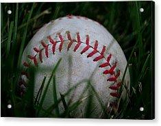 Baseball Acrylic Print by Diane Reed