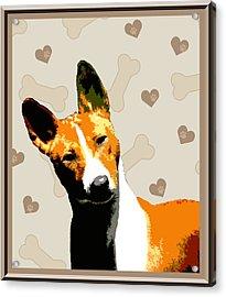 Basenji Acrylic Print by One Rude Dawg Orcutt