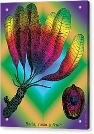 Basia Plant Acrylic Print