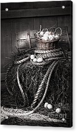Basket Of Eggs On A Bale Of Hay Acrylic Print by Sandra Cunningham