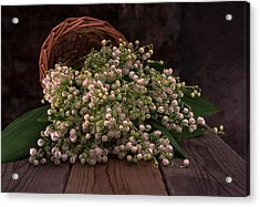 Acrylic Print featuring the photograph Basket Of Fresh Lily Of The Valley Flowers by Jaroslaw Blaminsky