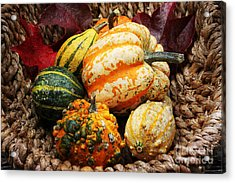 Basket Of Pumpkins Acrylic Print