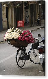 Basket Of Roses Acrylic Print by Lee Stickels