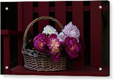 Basket On The Bench Acrylic Print by Rebecca Cozart