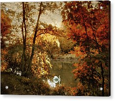 Basking In Autumn Acrylic Print by Jessica Jenney