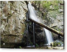 Baskins Creek Falls Acrylic Print by James Elam