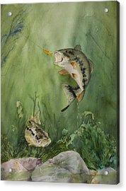Bass On The Bottom Acrylic Print