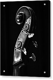Bass Violin Acrylic Print by Julia Wilcox