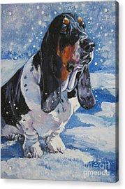 basset Hound in snow Acrylic Print by Lee Ann Shepard