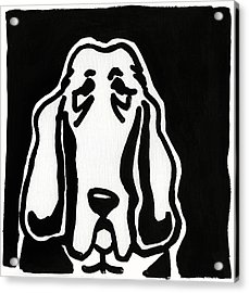Acrylic Print featuring the drawing Basset Hound Ink Sketch by Leanne WILKES