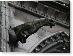 Acrylic Print featuring the photograph Bat Eared Dog Gargoyle Of Notre Dame by Christopher Kirby