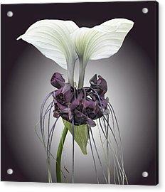 Bat Plant Acrylic Print