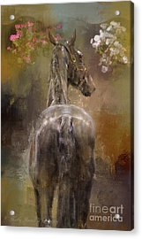 Bath Time Acrylic Print by Kathy Russell