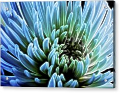 Bathing In Blue II Acrylic Print