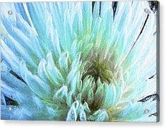 Bathing In Blue IIi Acrylic Print