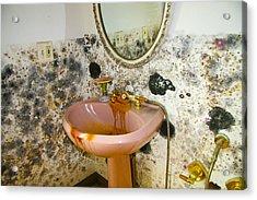 Bathroom Mold Acrylic Print by William Furguson