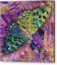 Batik Butterfly Acrylic Print