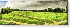 Battle Of The Somme Trench Frontline At Beaumont-hamel - Vintage Version Acrylic Print by Weston Westmoreland