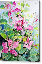 Bauhinia And Duranta Acrylic Print