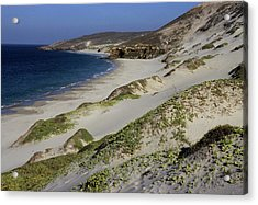 Bay Beach And Sand Dunes Acrylic Print