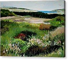 Bay Meadow Acrylic Print by Diane Ursin