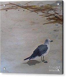 Bay Watch Acrylic Print by Carla Dabney