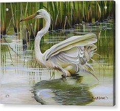 Bayou Caddy Great Egret Acrylic Print